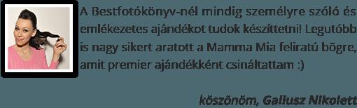 Gallusz Nikolett
